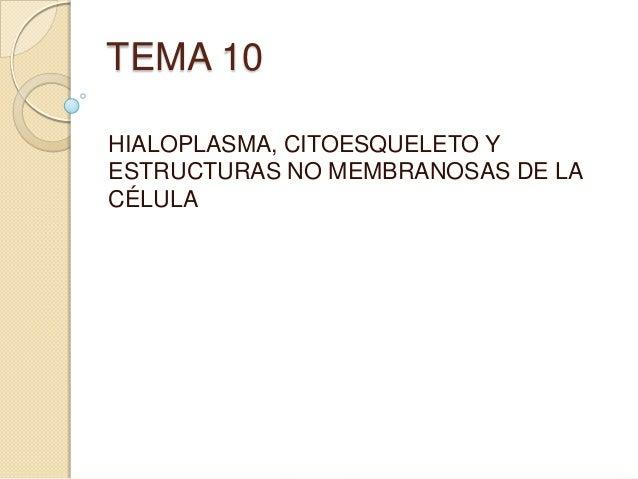 TEMA 10 HIALOPLASMA, CITOESQUELETO Y ESTRUCTURAS NO MEMBRANOSAS DE LA CÉLULA
