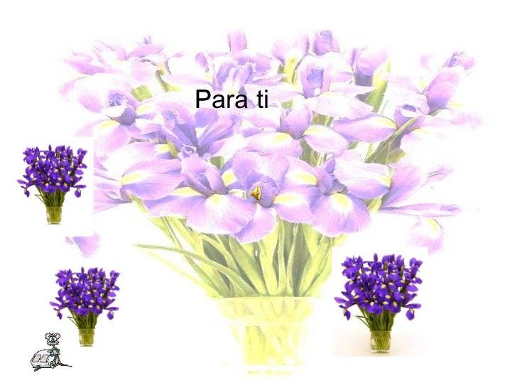 Presentación1(9)