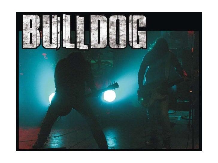 Presentación1 bull dog