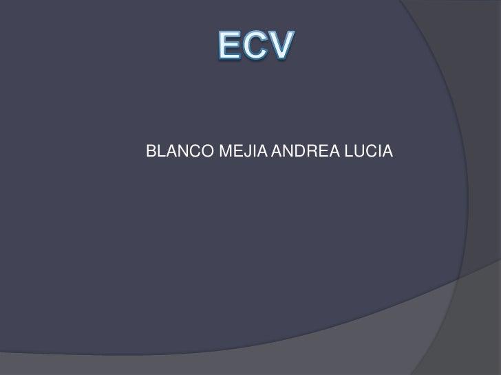 ECV<br />BLANCO MEJIA ANDREA LUCIA <br />