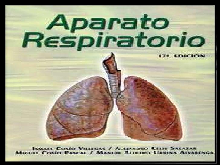 Sistema respiratorioLa función principal de este sistemaes proveer de oxigeno a la sangre, yeliminar de ella el dióxido de...