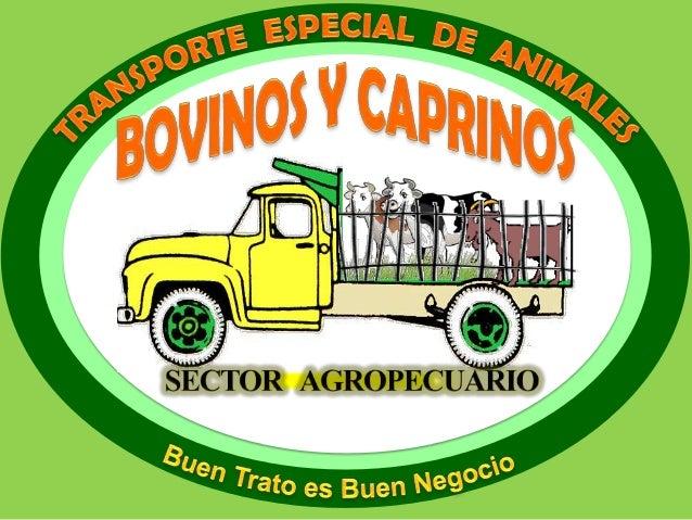 transporte Especial Para animales Bovinos Y caprinos.
