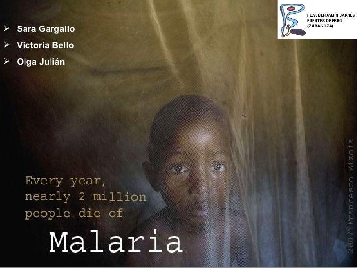 Salud / Malaria
