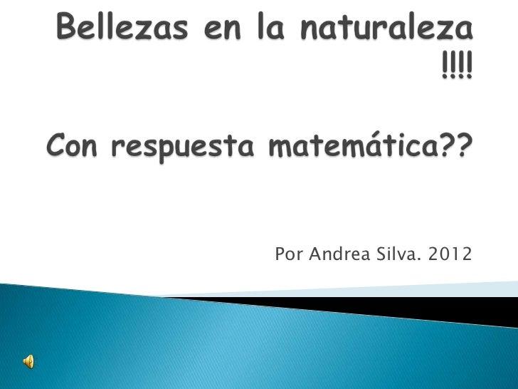 Por Andrea Silva. 2012