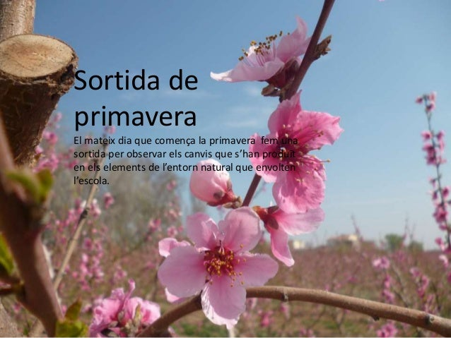 Sortida de primavera El mateix dia que comença la primavera fem una sortida per observar els canvis que s'han produït en e...