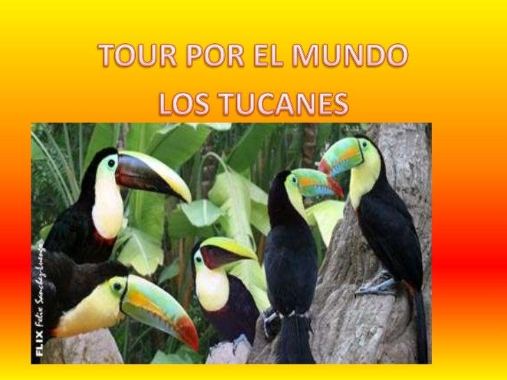 TOUR POR EL MUNDO<br />LOS TUCANES<br />