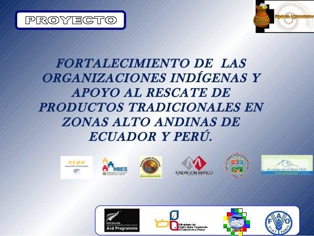FORTALECIMIENTO DE LASORGANIZACIONES INDÍGENAS Y    APOYO AL RESCATE DEPRODUCTOS TRADICIONALES EN   ZONAS ALTO ANDINAS DE ...
