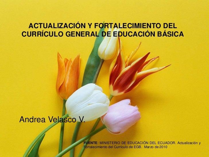 ACTUALIZACIÓN Y FORTALECIMIENTO DEL CURRÍCULO GENERAL DE EDUCACIÓNBÁSICA<br />Andrea Velasco V. <br />FUENTE: MINISTERIO D...