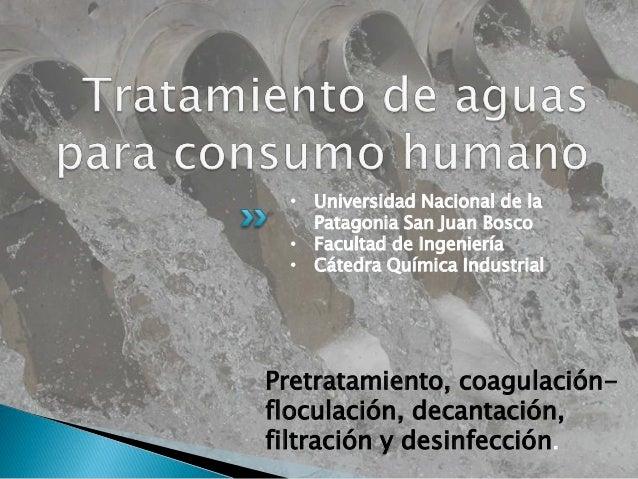 Pretratamiento, coagulación- floculación, decantación, filtración y desinfección. • Universidad Nacional de la Patagonia S...
