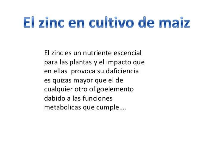 El zinc es un nutriente escencialpara las plantas y el impacto queen ellas provoca su daficienciaes quizas mayor que el de...