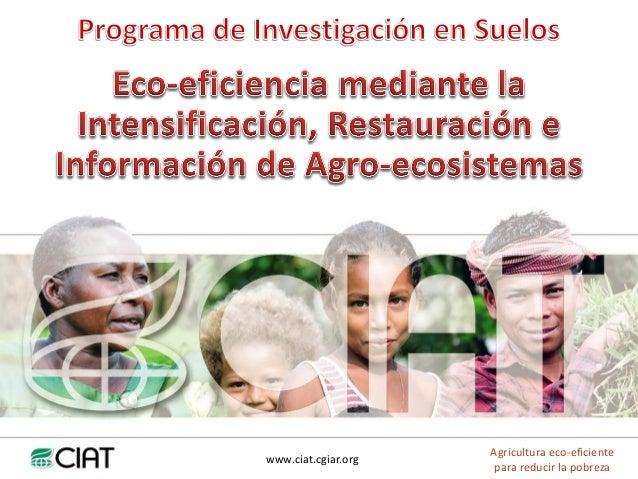 www.ciat.cgiar.orgAgricultura eco-eficientepara reducir la pobreza