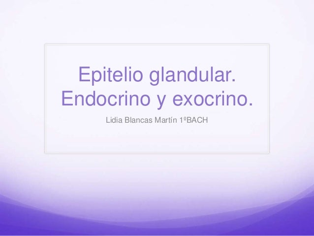Epitelio glandular. Endocrino y exocrino. Lidia Blancas Martín 1ºBACH