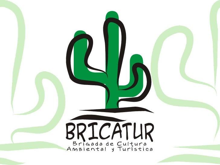 Brigada de Cultura Ambiental y Turística BRICATUR