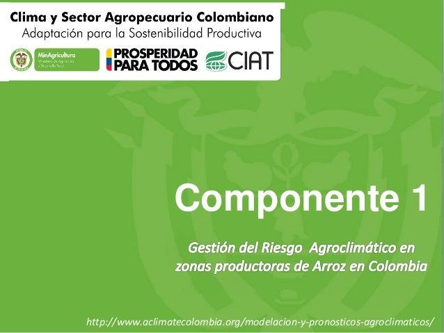 Componente 1  http://www.aclimatecolombia.org/modelacion-y-pronosticos-agroclimaticos/