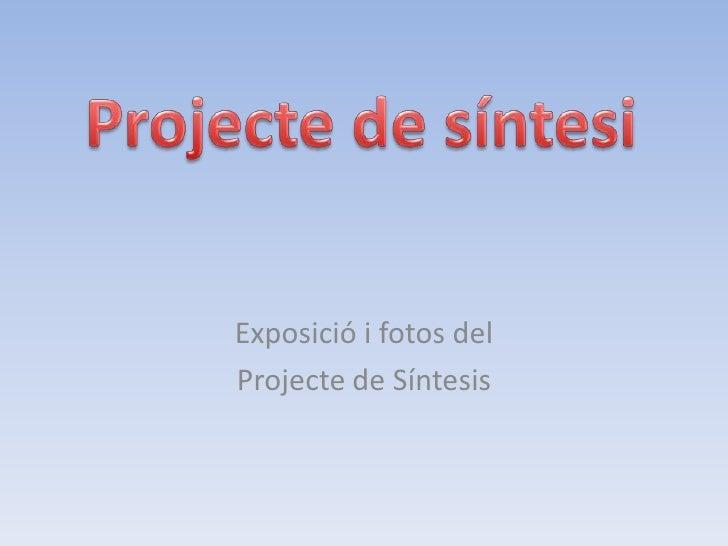 Exposició i fotos del Projecte de Síntesis
