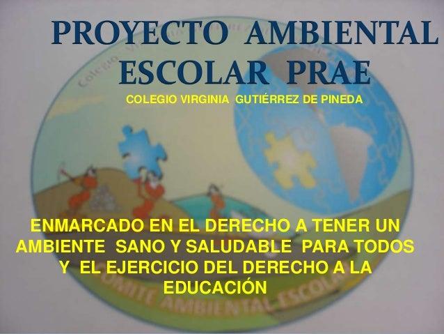 PROYECTO AMBIENTAL ESCOLAR PRAE COLEGIO VIRGINIA GUTIÉRREZ DE PINEDA ENMARCADO EN EL DERECHO A TENER UN AMBIENTE SANO Y SA...