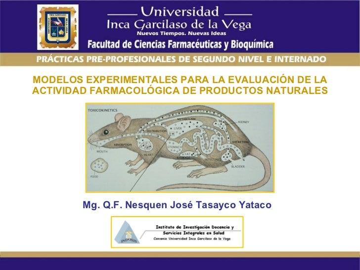 MODELOS EXPERIMENTALES PARA LA EVALUACIÓN DE LA ACTIVIDAD FARMACOLÓGICA DE PRODUCTOS NATURALES Mg. Q.F. Nesquen José Tasay...