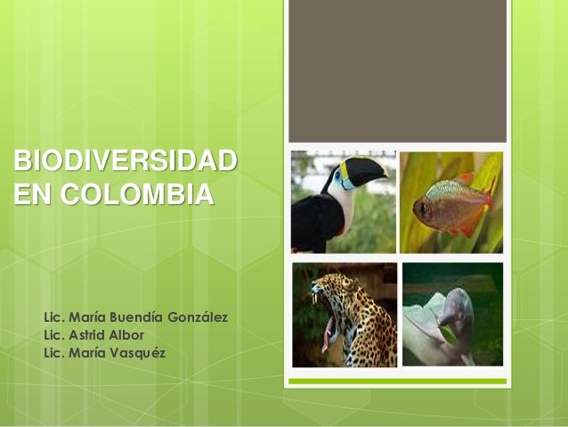 BIODIVERSIDADEN COLOMBIA Lic. María Buendía González Lic. Astrid Albor Lic. María Vasquéz