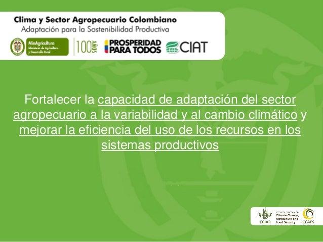 Fortalecer la capacidad de adaptación del sector agropecuario a la variabilidad y al cambio climático y mejorar la eficien...