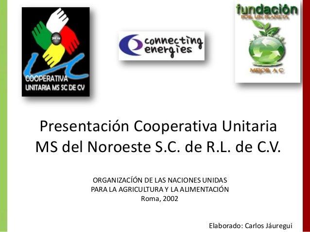 Presentación Cooperativa Unitaria MS del Noroeste S.C. de R.L. de C.V. ORGANIZACÍÓN DE LAS NACIONES UNIDAS PARA LA AGRICUL...