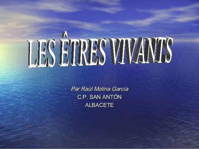 Par Raúl Molina García  C.P. SAN ANTÓN     ALBACETE