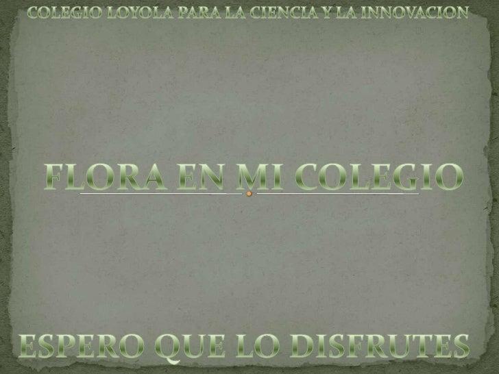 COLEGIO LOYOLA PARA LA CIENCIA Y LA INNOVACION <br />FLORA EN MI COLEGIO<br />ESPERO QUE LO DISFRUTES <br />