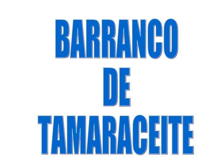 BARRANCO  DE  TAMARACEITE
