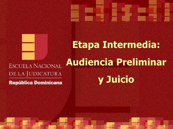 Etapa Intermedia: Audiencia Preliminar       y Juicio