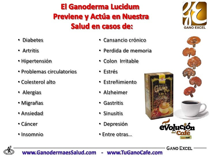 benefits of ganoderma lucidum Coffee & organic ganoderma lucidum with panax ginseng from organo gold, try our quality coffee with ganoderma plus the prized ancient root of panax ginseng.