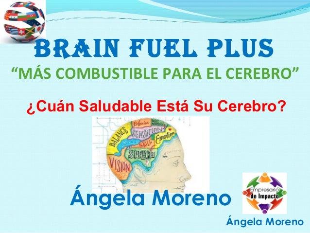 Mejor Producto del Mundo para Nutrir Tu Cerebro