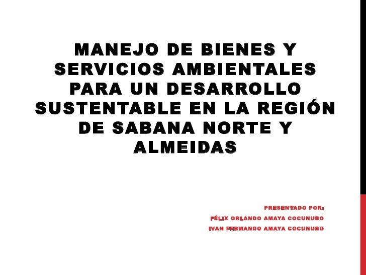 MANEJO DE BIENES Y SERVICIOS AMBIENTALES  PARA UN DESARROLLOSUSTENTABLE EN LA REGIÓN   DE SABANA NORTE Y        ALMEID...