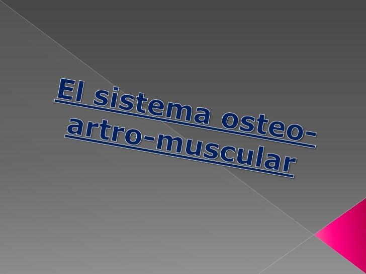 El sistema osteo-artro-muscular<br />