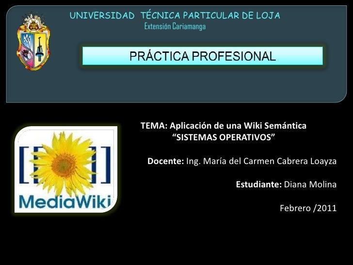 UNIVERSIDAD  TÉCNICA PARTICULAR DE LOJA<br />Extensión Cariamanga<br />PRÁCTICA PROFESIONAL<br />TEMA: Aplicación de una W...