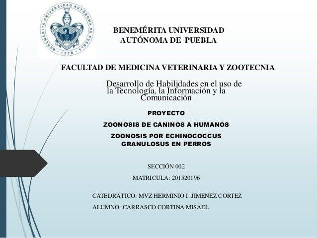 BENEMÉRITA UNIVERSIDAD AUTÓNOMA DE PUEBLA FACULTAD DE MEDICINA VETERINARIA Y ZOOTECNIA SECCIÓN 002 MATRICULA: 201520196 CA...
