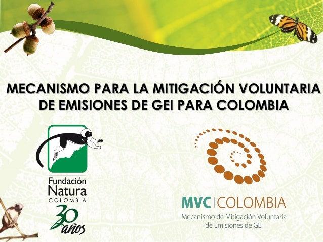 Primer Taller Gold Standard en Colombia- Presentación ejecutiva MVC Por: Roberto Gomez