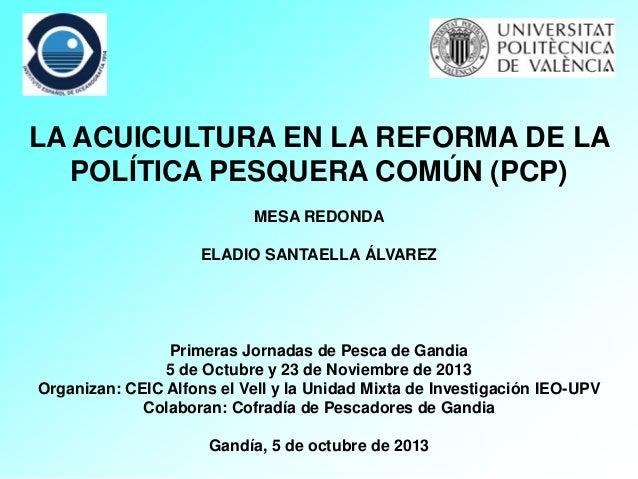 La acuicultura en la reforma de la política pesquera común (PCP)
