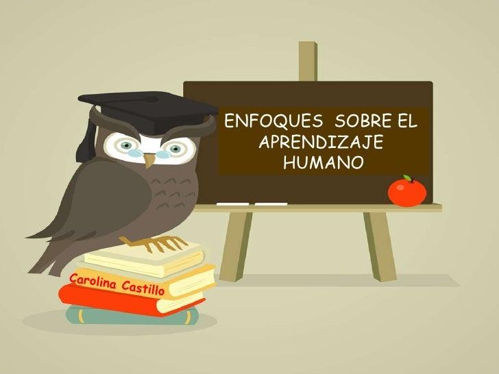 ENFOQUES  SOBRE EL  APRENDIZAJE  HUMANO Carolina Castillo