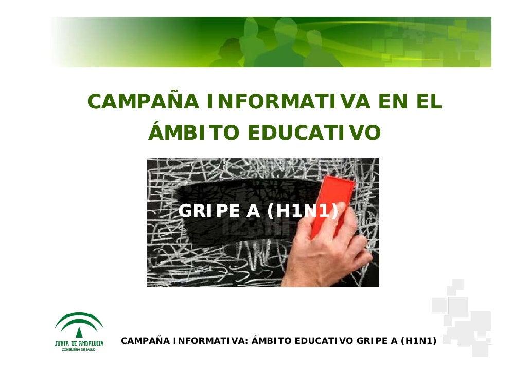 CAMPAÑA INFORMATIVA EN EL       ÁMBITO EDUCATIVO              GRIPE A (H1N1)       CAMPAÑA INFORMATIVA: ÁMBITO EDUCATIVO G...