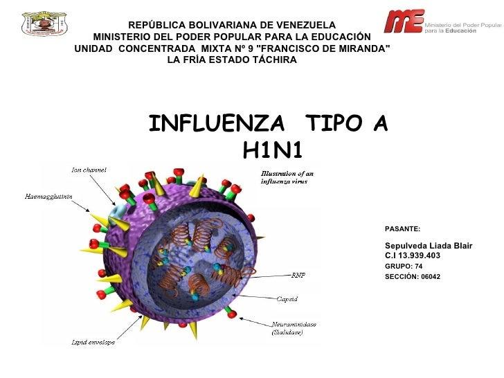 PresentacióN Enfluenza Liada