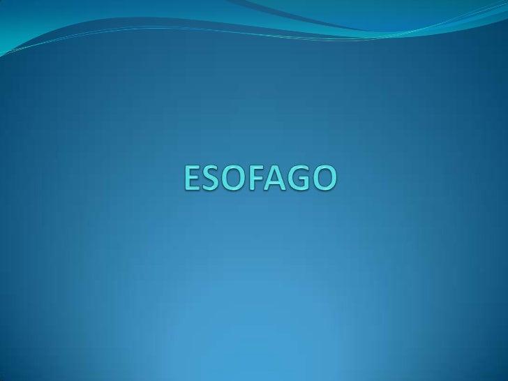 Las patologías que puede sufrir elesófago son:1. ANOMALIAS CONGENITAS: Atresia esofágica Fístulas Coristomas Estenosis