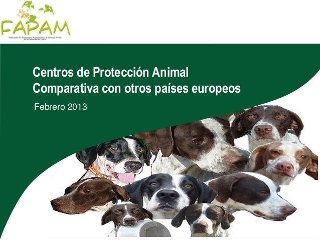 Centros de Protección AnimalComparativa con otros países europeosFebrero 2013