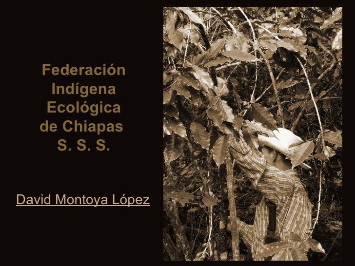 Federación Indígena Ecológica de Chiapas  S. S. S. David Montoya López