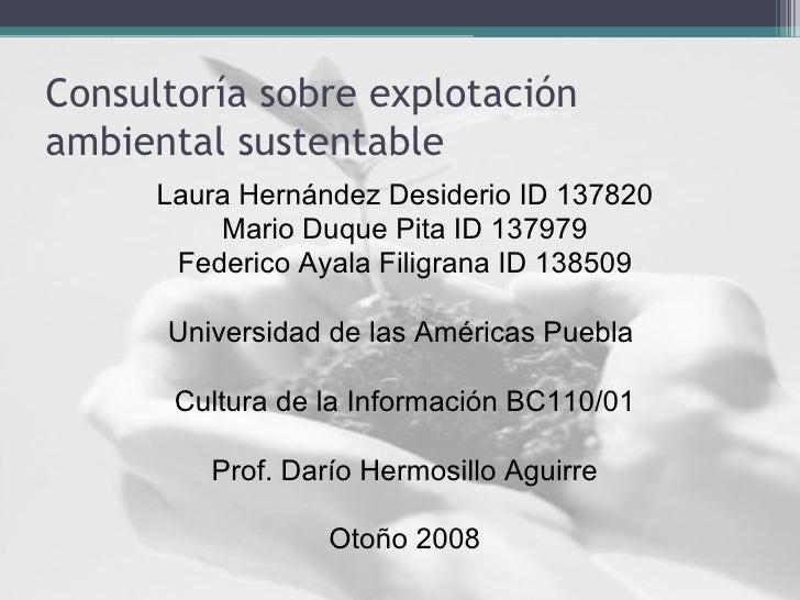 Consultoría sobre explotación ambiental sustentable <ul><li>Laura Hernández Desiderio ID 137820 </li></ul><ul><li>Mario Du...