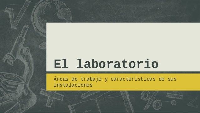 El laboratorioÁreas de trabajo y características de susinstalaciones