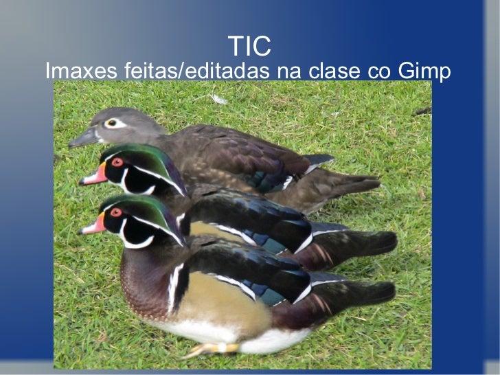TIC Imaxes feitas/editadas na clase co Gimp