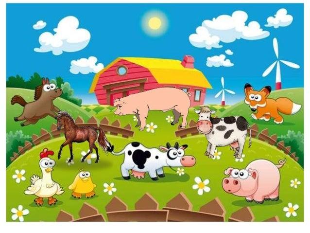 La vaca es un animal a) Mamífero b) Herbívoro c) Omnívoro