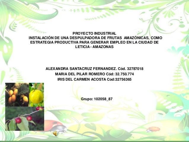 PROYECTO INDUSTRIALINSTALACIÓN DE UNA DESPULPADORA DE FRUTAS AMAZÓNICAS, COMO ESTRATEGIA PRODUCTIVA PARA GENERAR EMPLEO EN...