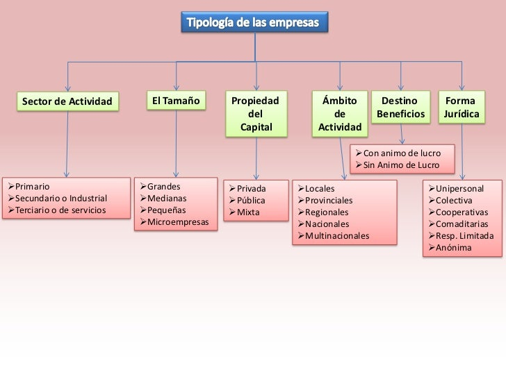 Sector de Actividad        El Tamaño      Propiedad        Ámbito         Destino        Forma                            ...