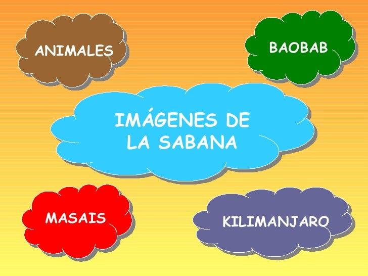 ANIMALES                 BAOBAB           IMÁGENES DE            LA SABANA MASAIS            KILIMANJARO
