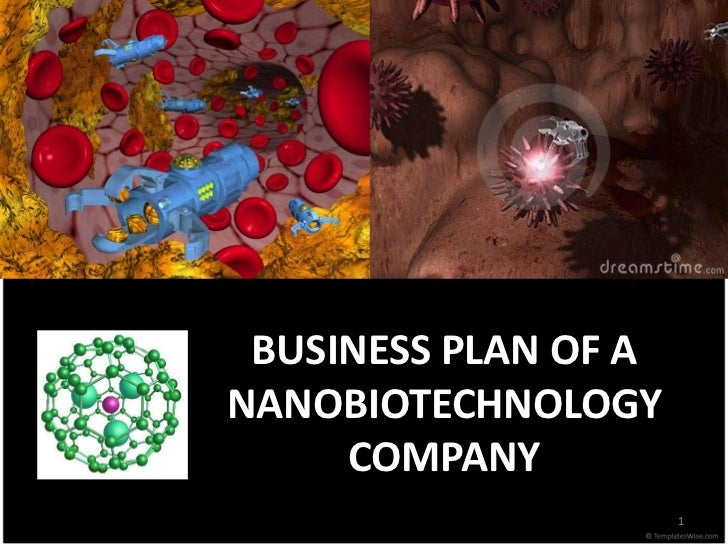 BUSINESS PLAN OF ANANOBIOTECHNOLOGY     COMPANY                      1